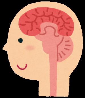 脳は身体の司令塔