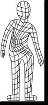 骨格の歪み